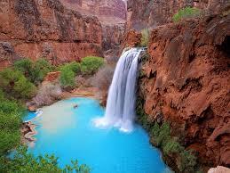 life around us grand canyon the national park arizona usa