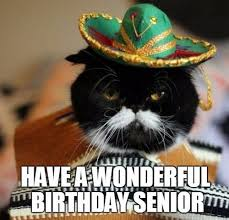 Cat Birthday Memes - mexican birthday memes wishesgreeting