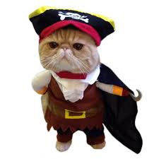 alfie pet apparel petoga couture jack pirate party