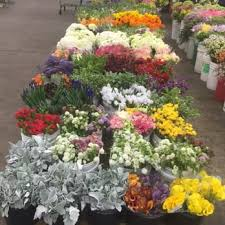 los angeles florist los angeles flower district 605 photos 188 reviews florists