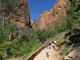 file riverside walk to zion narrows zion zion national
