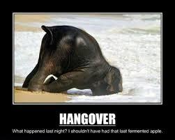 Hangover Memes - memes running from prozac