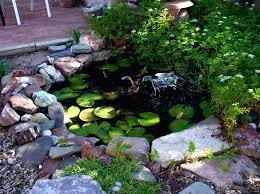 Small Garden Pond Ideas Small Landscape Pond Ideas Breathtaking Backyard Pond Ideas Small