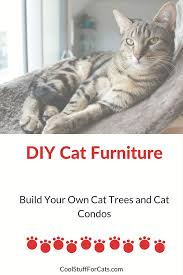 best cat tree plans for building diy cat furniture cool stuff