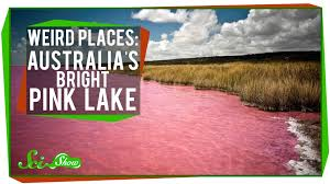 Weirdest Color Names by Weird Places Australia U0027s Bright Pink Lake Youtube