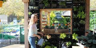 your guide to creating a vertical garden lifestyle home