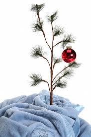 linus christmas tree grief brown pathetic christmas tree the green