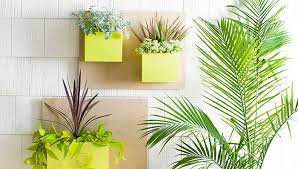 Lowes Planter Box by Customized Wall Planter Boxes