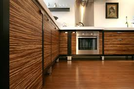 Bamboo Cabinets Kitchen Interior Design Eco Bamboo Kitchen Cabinets Unique Bamboo