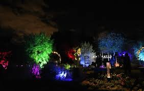 enchanted forest of light tickets enjoy these pics from our preview of enchanted forest of light at