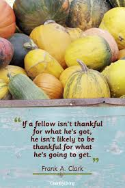 quotes about fall gardening 25 best thanksgiving day quotes happy thanksgiving toast ideas