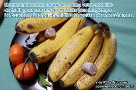 moucherons cuisine l astuce géniale pour empêcher vos fruits de pourrir trop rapidement