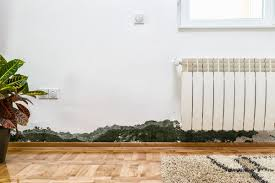 Luxury Home Stuff by Does Air Purifier Help With Mold Find The Best Answer Here