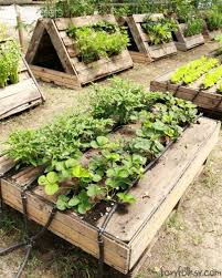 Raised Garden Beds From Pallets - 34 striking and easy to build diy raised garden beds ideas for