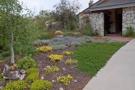 Drought Tolerant Landscaping Ideas New Drought Resistant Landscaping Ideas Thediapercake Home Trend