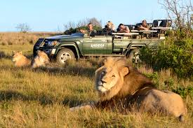Clothes To Wear On A Safari Kariega Private Game Reserve Faqs Luxury Accommodation