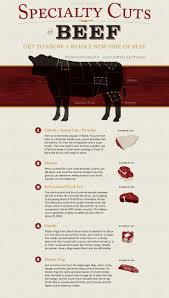38 best what part of a cow chart images on pinterest cooking
