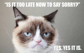 Angry Cat Meme - angry cat meme blank 14555 fish consulting