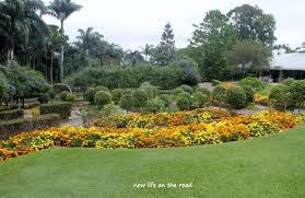 Bundaberg Botanic Gardens Bundaberg Botanical Gardens New On The Road