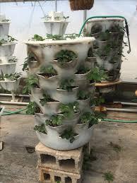 the 25 best plastic barrel planter ideas on pinterest plastic