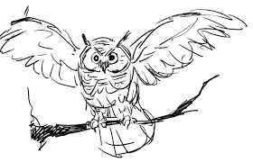 coloring pages draw an owl exprimartdesign com