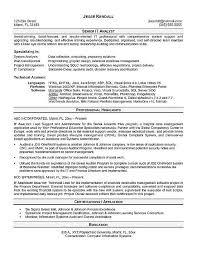 data analyst resume template stibera resumes