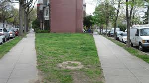 how much is a small plot of grass worth in 70 000