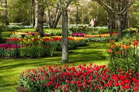 keukenhof flower gardens netherlands travel guide eupedia