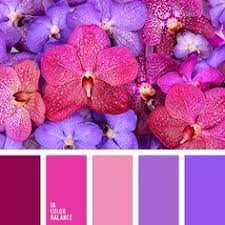 beautiful cheerful palette bright colors cheer up are beneficial
