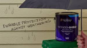ppg pittsburgh paints always working for you youtube