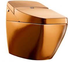 like a king gold plated toilet unveiled unfinished man