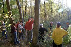 Vermont wildlife tours images Vermont woodland tours jpg