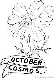flower printable coloring sheets printable coloring