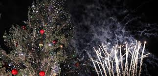 largest living christmas tree in texas u0027 officially lit texas