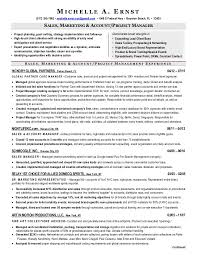 Resume Key Skills Cheap Thesis Proposal Ghostwriters Website For Technical