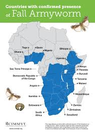 Map Of Sub Saharan Africa Fall Armyworm Devastates Crops In Sub Saharan Africa A Quick And