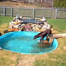 Dog Backyard Playground by Backyard Ideas For Dogs Outdoors Home Ideas Dog Playground