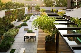 contemporary landscape by sausalito landscape architect shades of