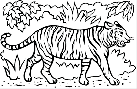 coloring page tigers tiger coloring page ti coloring awesome coloring pages kids sheets