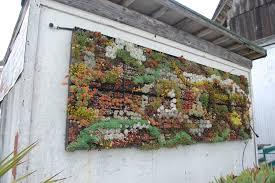 wall garden containers garden ideas
