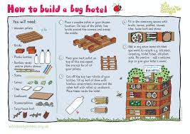 how to build a bug hotel with step by step instructions insect