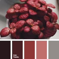 best 25 color scheme generator ideas on pinterest color palette