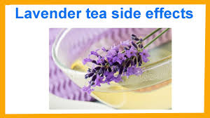 lavender tea lavender tea side effects