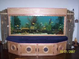 amazing aquarium home design and decoration ideas creative plant