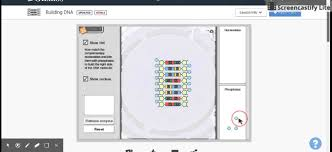 force and fan carts gizmo answer key explore learning building dna gizmo demonstration youtube