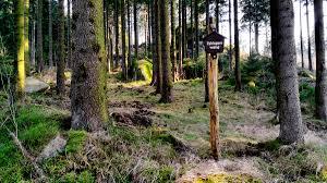 Rabenklippe Bad Harzburg Die 10 Schönsten Wanderungen Im Harz Komoot
