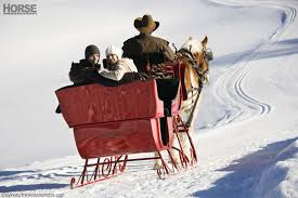 sleigh rides trotting through a winter