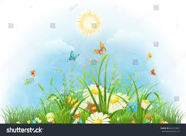 summer floral background sun flowers butterflies stock vector