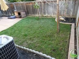 Patio Artificial Grass Backyard With A Concrete Patio In Fairfield California