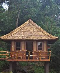 Native House Design 27 Best Modern Bahay Kubo Images On Pinterest Tropical Houses